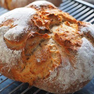quick dutch oven bread